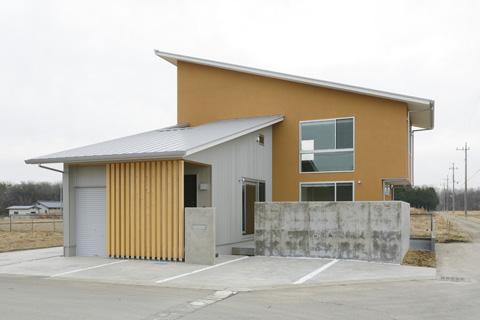 Nature-pop Art house