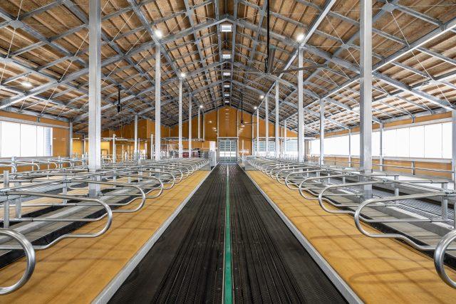 畜産酪農研究センタースマート酪農牛舎